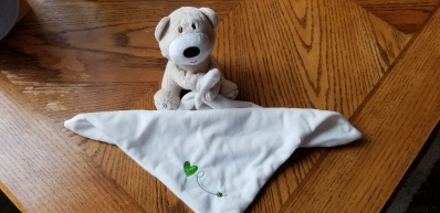 Bear Blanket 2