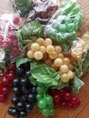 Grapes1
